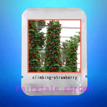 climbing strawberry seeds 300pcs strawberry seeds Organic fruit vegetable seeds professional pack seeds plant for home garden