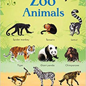 199 Zoo Animals (199 Pictures) Board book