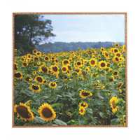 Allyson Johnson Field Of Sunshine Framed Wall Art
