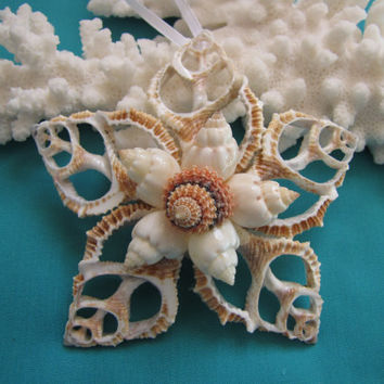 Seashell Ornament, Beach Decor Christmas Ornament, Shell Ornament, Nautical Ornament, Star Ornament, Beach Wedding Ornament, Coastal Decor