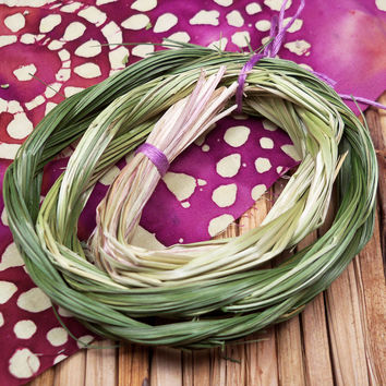 Sweetgrass Braid - Sacred Herb for Smudging - Use to Send Prayers to Goddess & Mother Earth