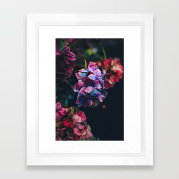 Treasure of Nature Framed Art Print by Mixed Imagery