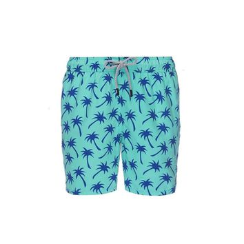 Tom & Teddy Palms Trunks Aqua and Blue