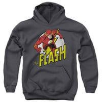 DC Comics Men's  Run Flash Run Hooded Sweatshirt Grey Rockabilia