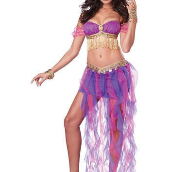Pink Purple Belly Dancer Costume (Small,Pink/Purple)