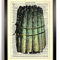 Fresh Green Asparagus Repurposed Book Upcycled Dictionary Art Vintage Book Print Recycled Vintage Dictionary Page  Buy 2 Get 1 FREE