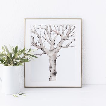 Winter Branch Tree Art Print