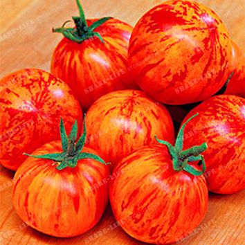 100pcs High Yields Tigerella Rare Tomato Seeds Bonsai Organic Vegetable& Fruit Seed,Potted Plant For Home&Garden Greenhouse Crop
