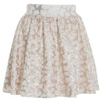 Lace Sequin Skater Skirt