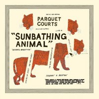 Sunbathing Animal (LP)