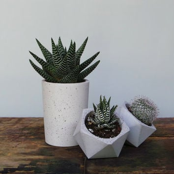 Set of 3: concrete cup planter & two geometric concrete planters. Geometric concrete planter. Concrete planters.  Minimalist style. Planter