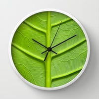 Veins in a leaf Wall Clock by Karl Wilson Photography
