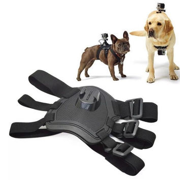 Dog Camera Harness