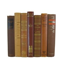Brown Decorative Vintage Book Set, S/7