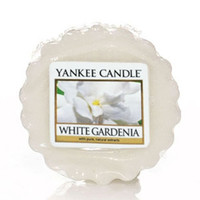 White Gardenia Single Tart by Yankee Candle