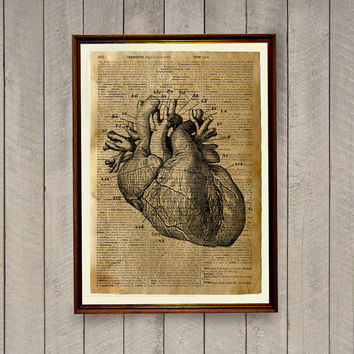 Heart anatomy poster Rustic decoration Vintage decor Old dictionary print
