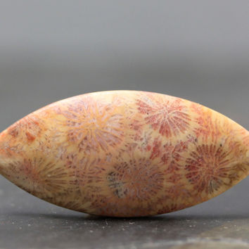 Large Floral Patterns, Pink Fossil Coral Natural Ocean Beach Stone Fossils Sea Gemstone Rustic Primitive Tribal Jewelry Crafts and Bead
