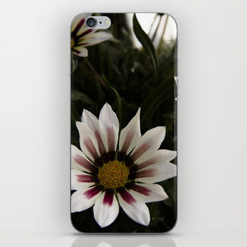 Flowers in summer iPhone & iPod Skin by VanessaGF