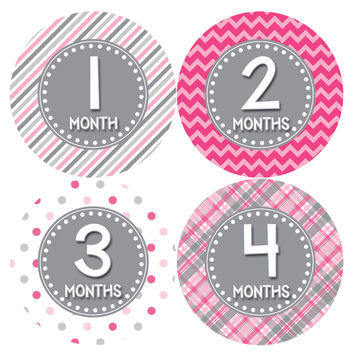 Baby Girl Monthly Baby Stickers Style #411