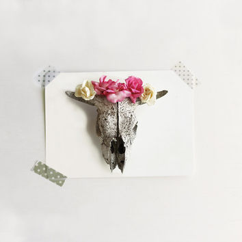 Flower Photography Skull with Pink Roses  Post Card Card  (2) with Metallic  Envelopes