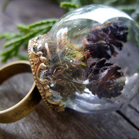 mini terrarium ring miniature terrarium jewelry moss pinecone woodland green brown glass dome forest