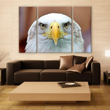 White Tailed Eagle Canvas Print 3 Panels Print Animal Art Wall Deco Fine Art Photography Repro Print for Home and Office Wall Decoration