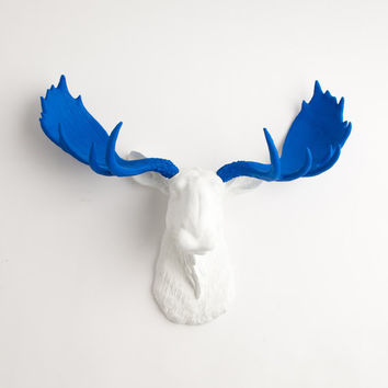 The Tsar - Resin Moose Head W/ Ocean Blue Antlers - Faux Taxidermy