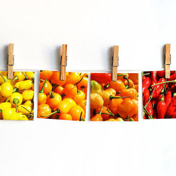 Kitchen photography set of 4 10x10cm (4x4 inches) Red orange yellow Kitchen wall decor Farm market Chili pepper Spices photo Bright cooking