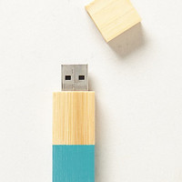 Echo Flash Drive