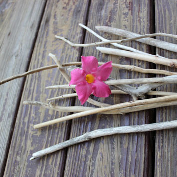 Eco Friendly Home Decor , Natural Driftwood Branches for Beachy Decorating , Vase Filler EF11