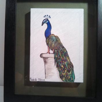 Drawing/illustration of a peacock, original drawing on stretched canvas using markers and ink and mounted in a black, hinged shadowbox