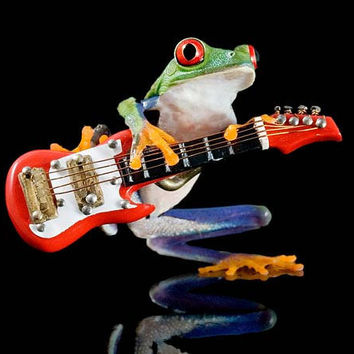 Electric Guitar Frog Mini Fender Guitar Art by FrogFun on Etsy