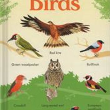 Usborne Books & More. 199 Birds