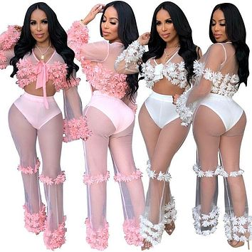 Women Sexy Pink/White Floral Appliques Mesh Two Piece Crop Top Pant Set
