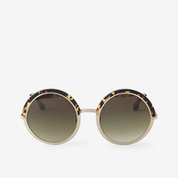 HALSEY SUNGLASSES