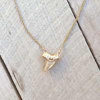 Golden Shark Tooth Necklace