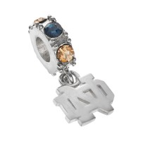 Dayna U Notre Dame Fighting Irish Crystal Sterling Silver Logo Charm (Grey)