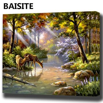 BAISITE DIY Framed Oil Painting By Numbers Flowers Pictures Canvas Painting For Living Room Wall Art Home Decor E949