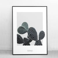 Watercolor Botanical Posters and Prints Nordic Wall Art Canvas Painting Cactus Wall Pictures For Living Room Home Decoration