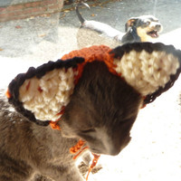 Cat Costume CROCHET PATTERN Fox Cat Hat Costume Pet Hat Pet Costume for Pet in Hat Pet Wearing Hat Pet Halloween Costume Pet Supplies Kawaii