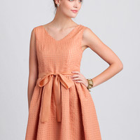 Picnic In June Dress