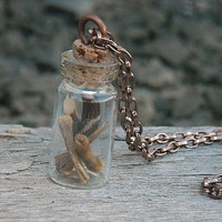 Little Bone and Feather Bottle Necklace By InkandRoses13
