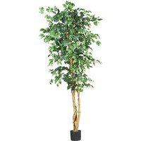 SheilaShrubs.com: 6' Ficus Silk Tree 5209 by Nearly Natural : Artificial Flowers & Plants