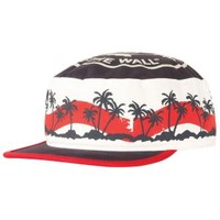 Vans Palm Wave Painters Cap - Men's at CCS