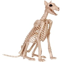 Skeleton Doberman