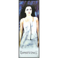 Evanescence Door Poster