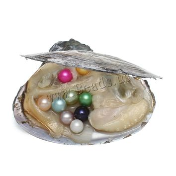 14 Kinds Color Pearl Oyster Shell Wish Jewelry Gifts Natural Real Pearls in Oyster Pearls Hot