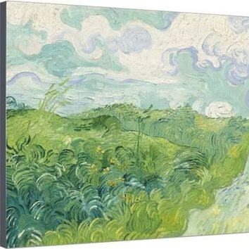 Green Wheat Fields, Auvers, 1890 Stretched Canvas Print by Vincent van Gogh at Art.com