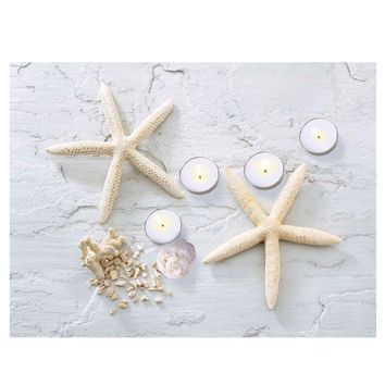 "LED Lighted Starfish  Seashell and Tea Light Candles Canvas Wall Art 11.75"" x 15.75"""