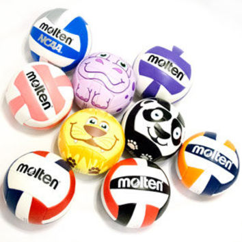 Molten Mini Volleyball - Lucky Dog Volleyball